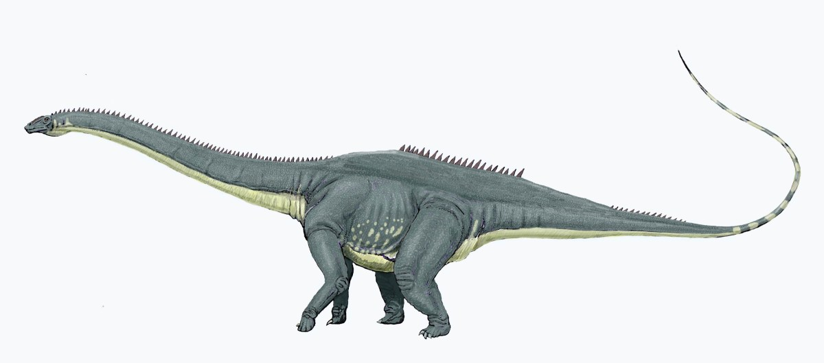 5 Facts About Diplodocus