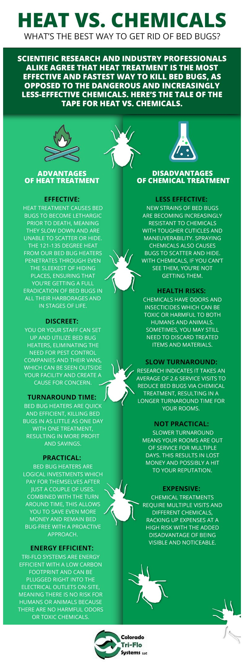 What To Do To Get Rid Of Bed Bugs