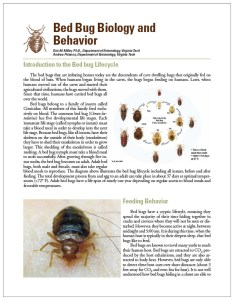 How Much Does A Bed Bug Extermination Cost