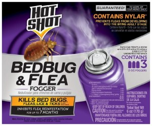 How To Get Rid Of Bed Bugs Fast And Easily