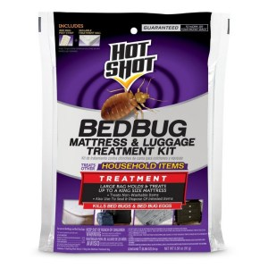 How To Get Rid Of Bed Bugs Mattress Cover