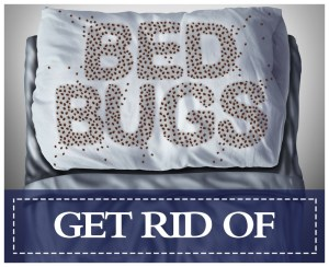 Natural Way To Remove Bed Bug Bites