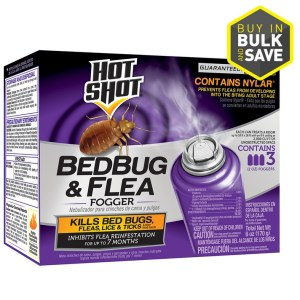 The Best Bed Bug Spray To Buy
