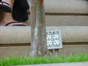 Des prises en plein milieu du square