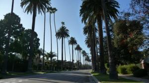 Une rue typique de Beverly Hills