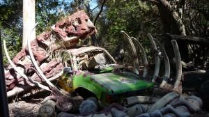 Un décor de Jurassic Park