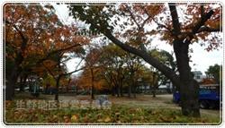 生野東公園250