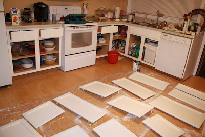 discount replacement kitchen cabinet doors kitchenaid effective spray paint cabinets 2016