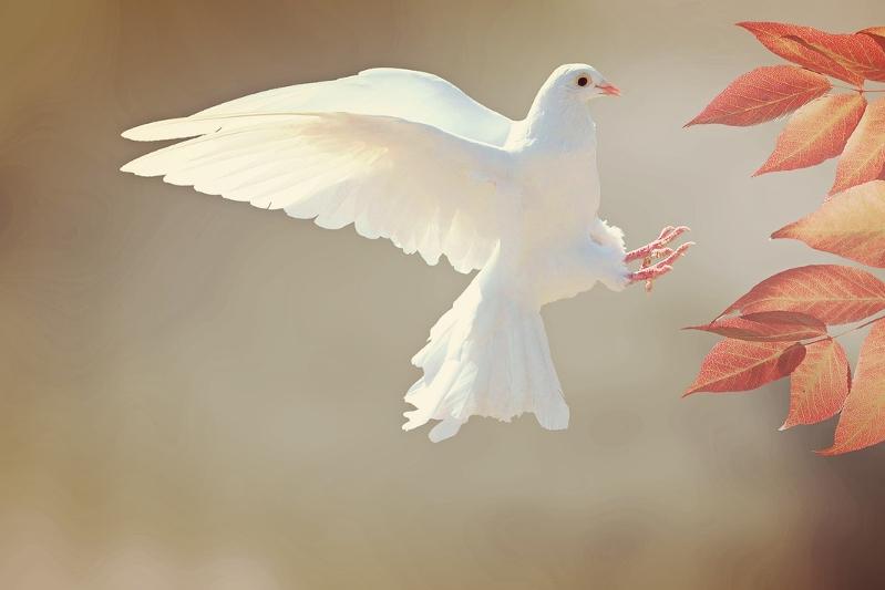 Wie is de Heilige Geest - klein