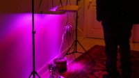 UV Grow Lights For Growing Plants Stock Footage Video ...