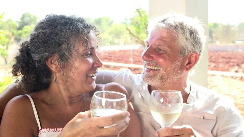Couple Making A Toast Together Stock Footage Video 3571586 ...