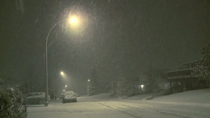 Snow Falling Video Wallpaper Car Traffic At Night On A Street Covered By Snow In Winter