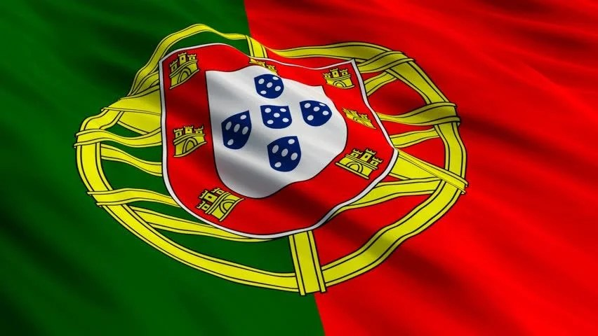 Image result for portuguese flag