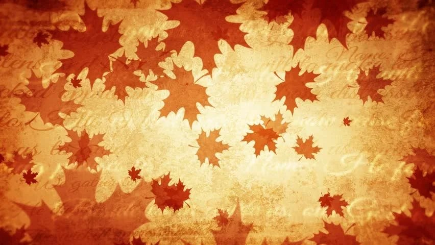 Falling Maple Leaves Wallpaper Perfectly Seamless No Fade Motion Background Loop