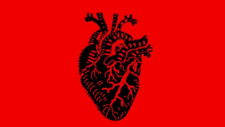 Image result for a beating heart