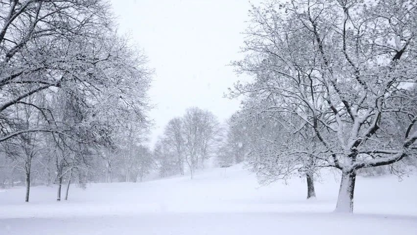 Snow Falling Stock Footage Video - Shutterstock