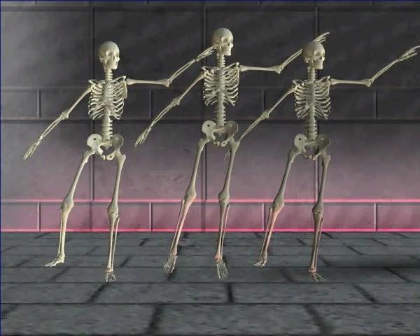 Essay Skeletons Mohenjo About Daro Csportsgearcom