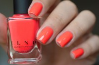 ILNP_SUMMER 2015_SO CORAL_LD_02