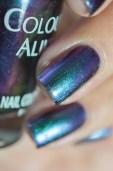 Colour Alike_Star_Vega_03