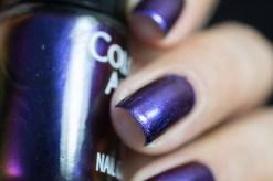Colour Alike_Stars_Castor_04