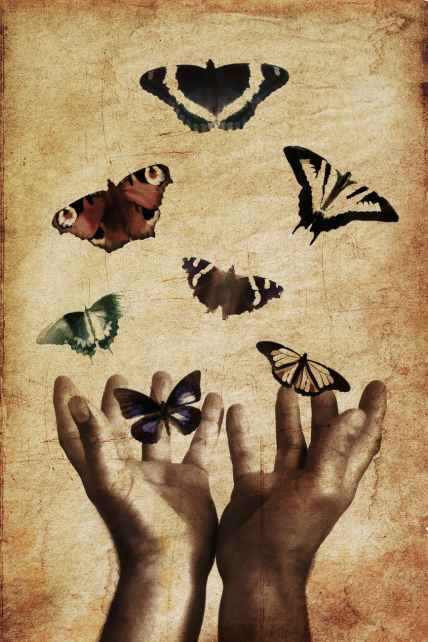 Hands butterflies freedom