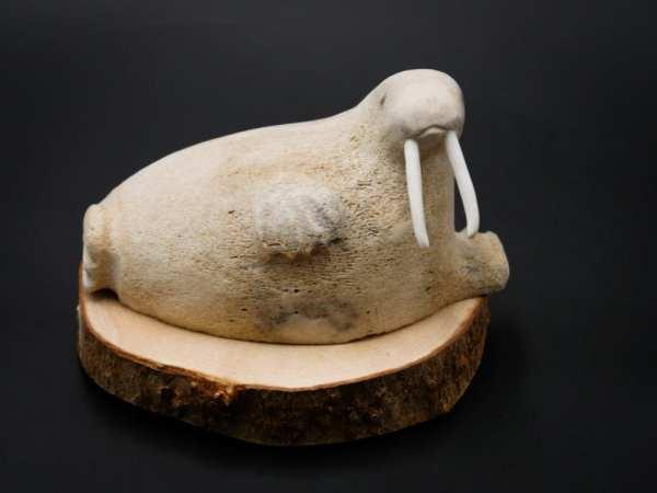 Whale Bone Walrus