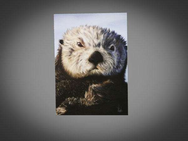 5x7 Sea Otter Card