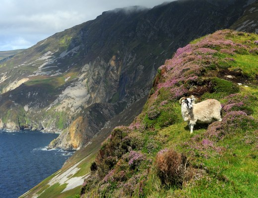 Salendo verso la cima di SLIEVE LEAGUE