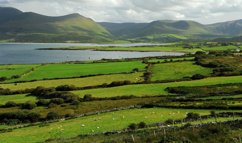 Un tipico paesaggio della verde IRLANDA