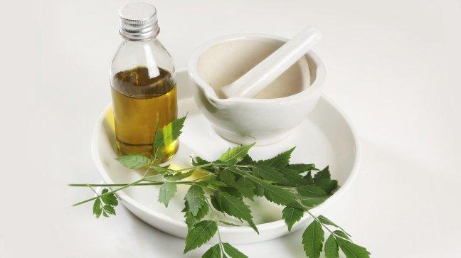 Olio di Neem: tanti benefici per pelle e capelli..e non solo!