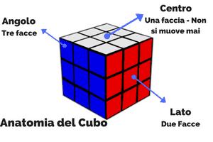 Anatomia del cubo