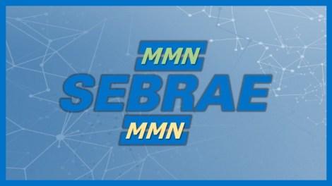 Marketing Multinível Sebrae - Destaque