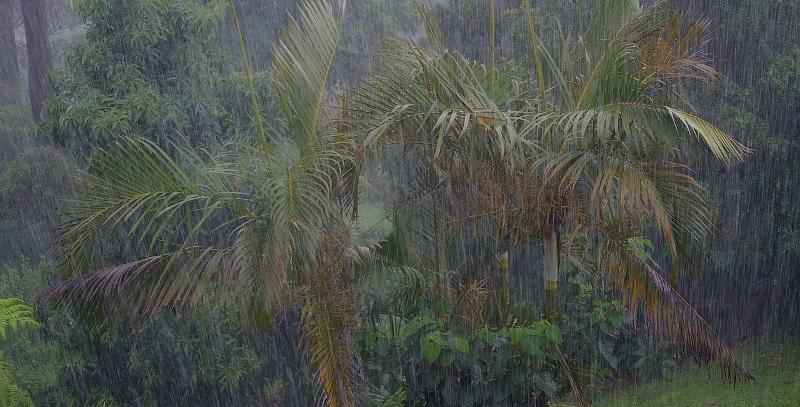 Pluie Réunion