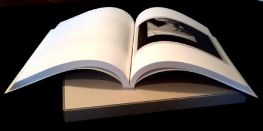 livre blanc daniel brush
