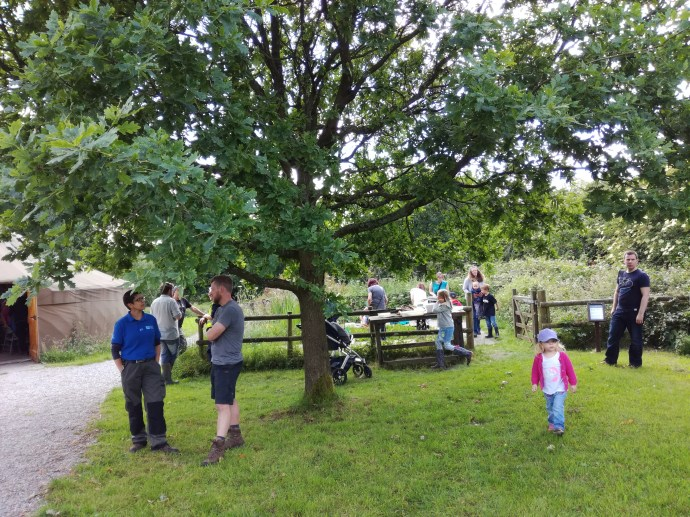 Pond dipping at the Hay Day