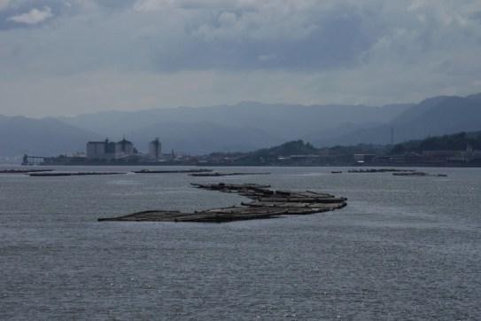 Japon - Miyajima / Mer de Seto