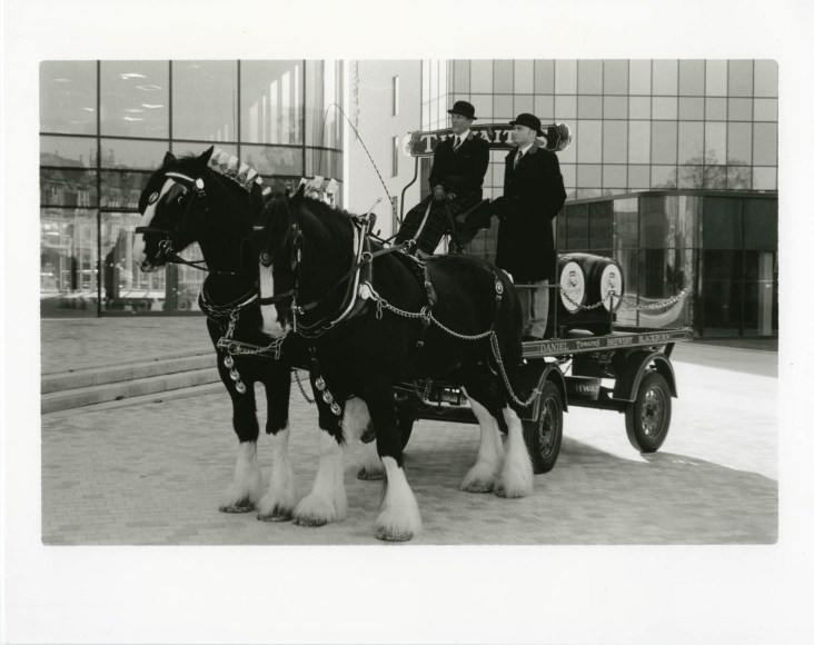 Horse and cart on black and white film by Brandon Donnelly