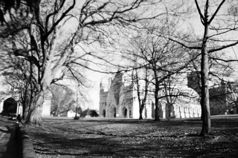 Black and white image by @nickpage Trying the Lomography La Sardina with some Ilford XP2 Super 400.