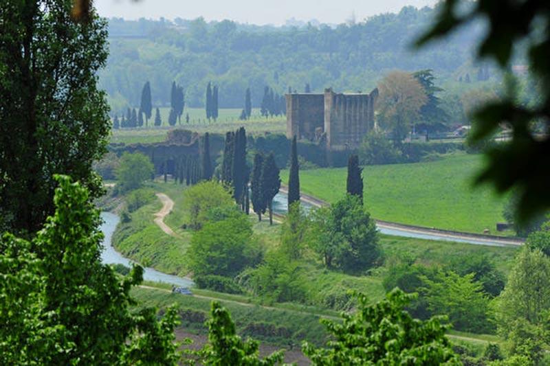 Il Parco del Mincio  Il Garda Online