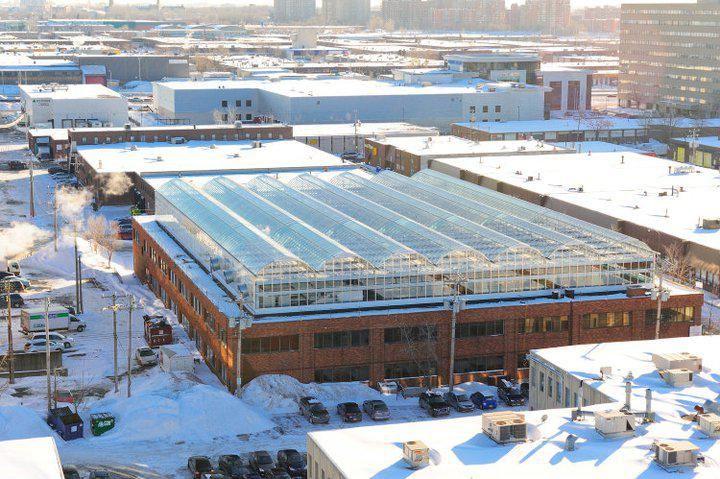 Lufa Farm a Montréal, riconversione di un edificio industriale