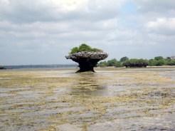 Roccia emersa durante la bassa marea