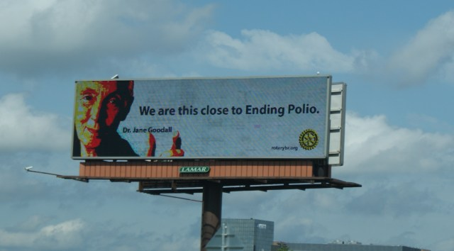 What can we learn from the Polio Social Marketing Campaign
