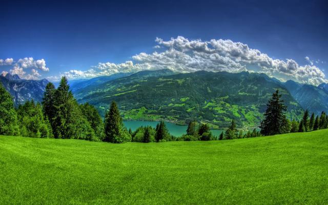 صور و خلفيات مناظر خضراء طبيعية مناسبة للجوال و سطح المكتب لحن الحياة