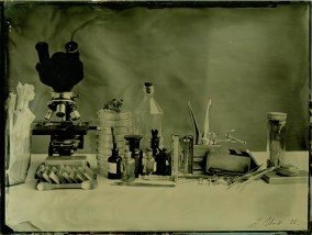 Bacteriology Ambrotype / 18x24cm / framed