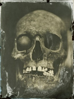 Scull, Ambrotype 18x24cm
