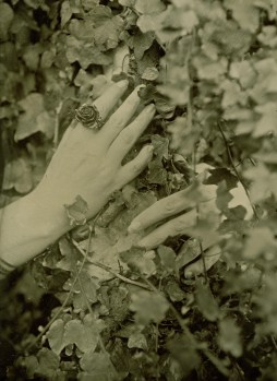 Hands, Ambrotype 13x18cm
