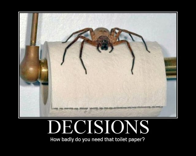 Friday Funny! ;-)  Bad decisions (2/5)
