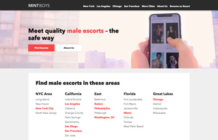 thinking of escorting MINTBOYS HOME PAGE - MINTBOYS DC