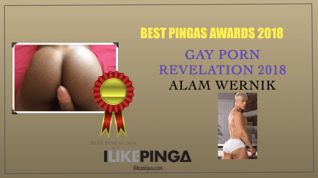 certificate gay porn revelation 2018, best pingas awards