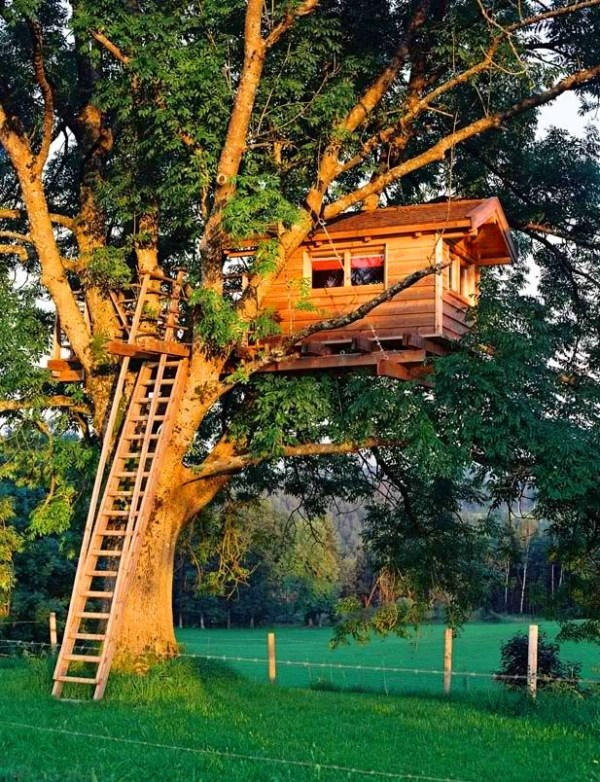 Office Treehouse.  In My Head, USA.